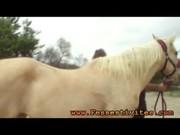 Конь ебет девушку рабыню